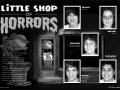 2008 Little Shop of Horrors 2.jpg